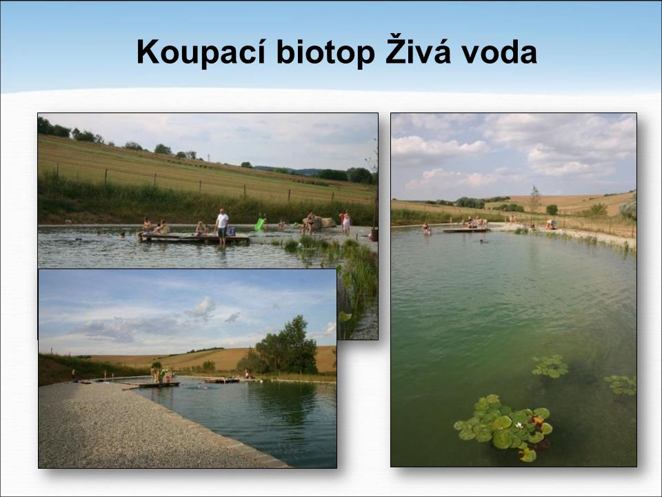 Koupací biotop Živá voda