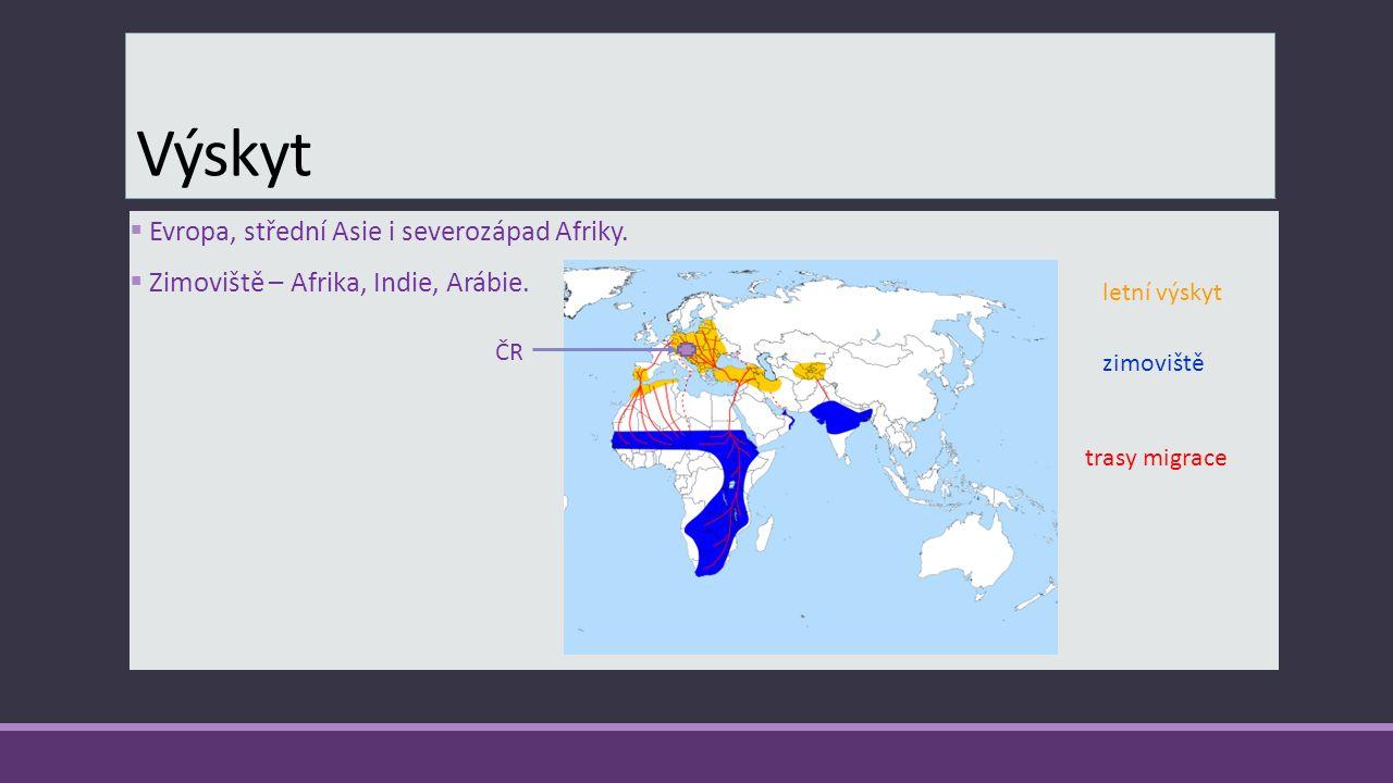 Výskyt Evropa, střední Asie i severozápad Afriky.