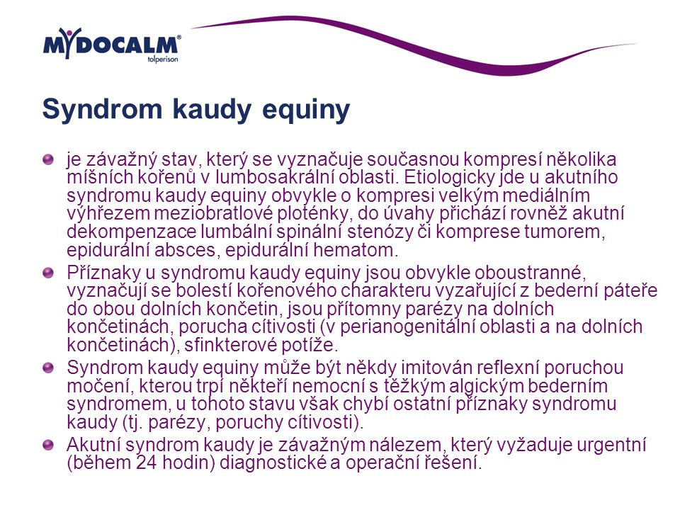 Syndrom kaudy equiny