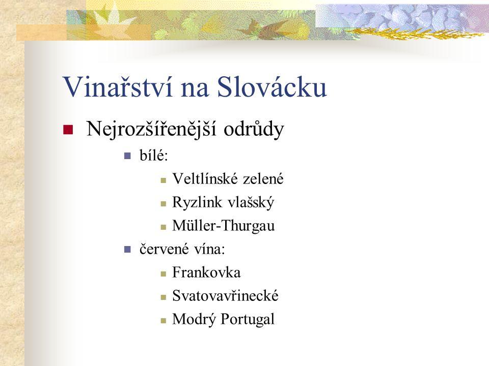 Vinařství na Slovácku Nejrozšířenější odrůdy bílé: Veltlínské zelené