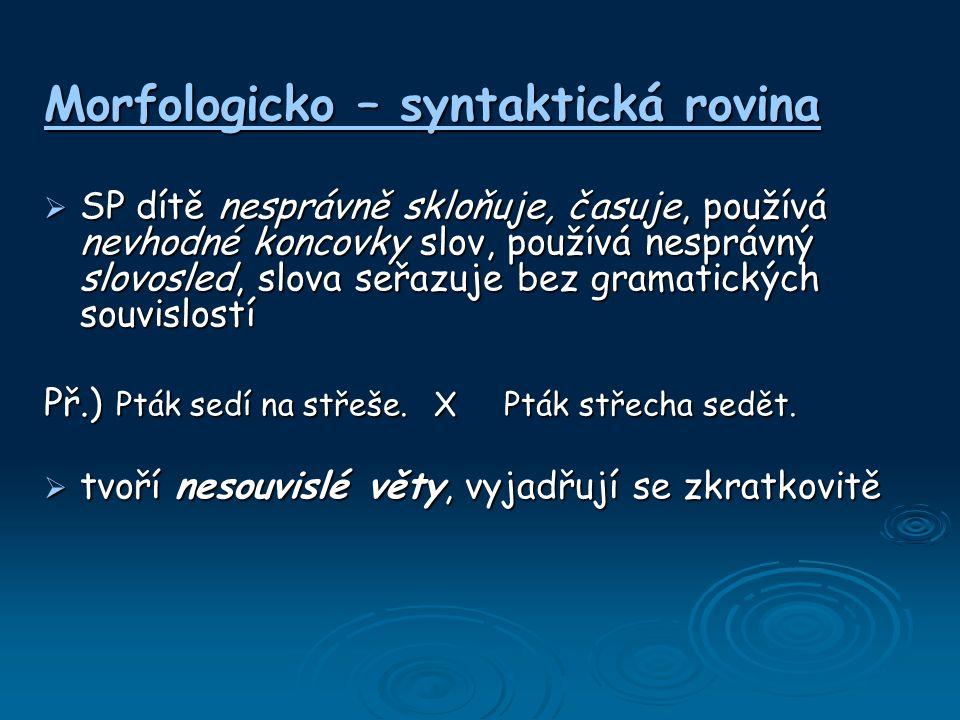 Morfologicko – syntaktická rovina