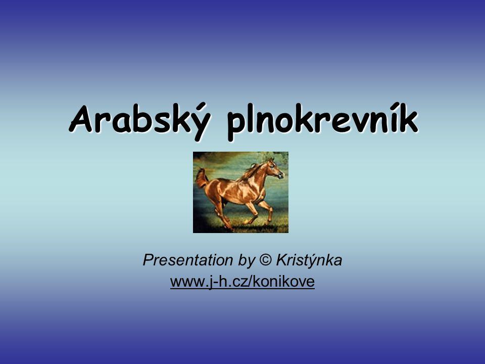 Presentation by © Kristýnka www.j-h.cz/konikove