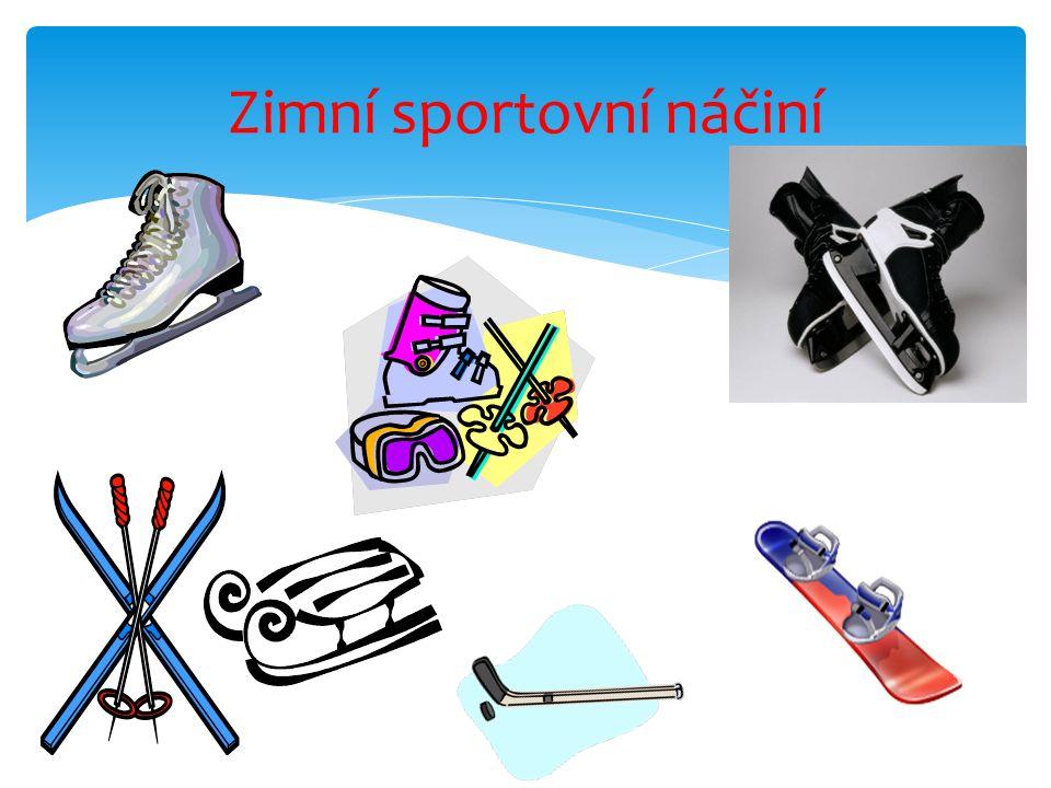 Zimní sportovní náčiní