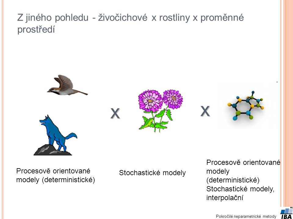 Z jiného pohledu - živočichové x rostliny x proměnné prostředí