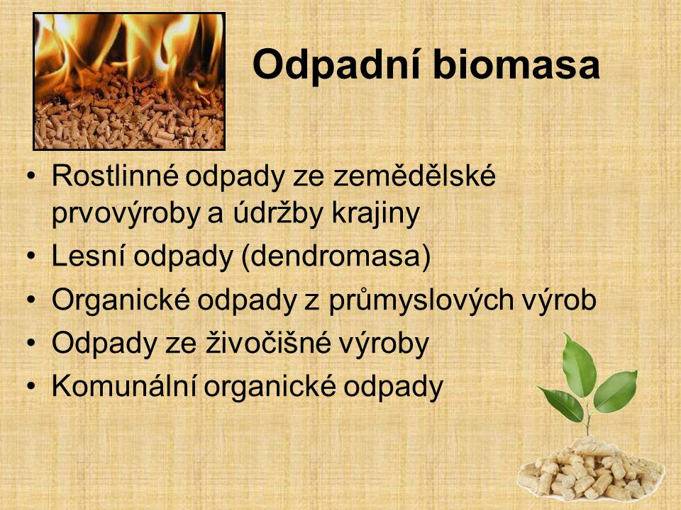 Odpadní biomasa Rostlinné odpady ze zemědělské prvovýroby a údržby krajiny. Lesní odpady (dendromasa)