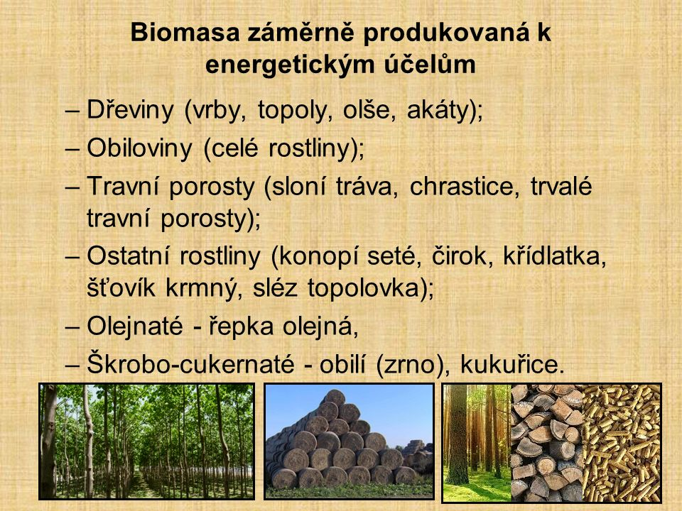 Biomasa záměrně produkovaná k energetickým účelům