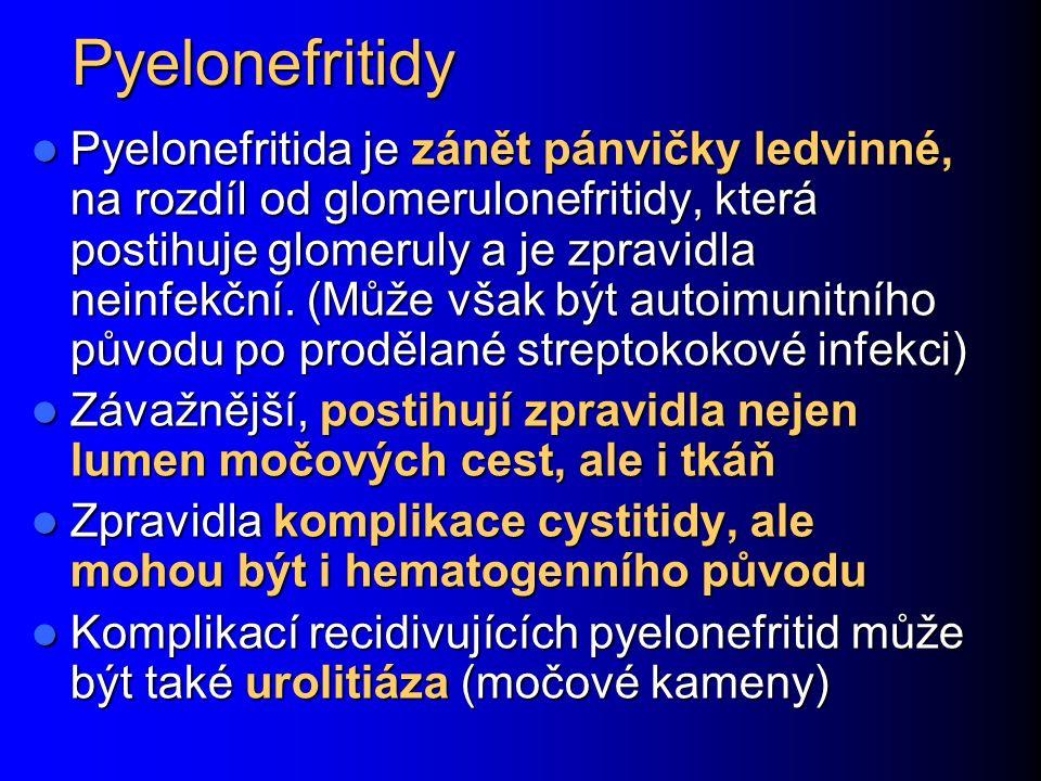 Pyelonefritidy