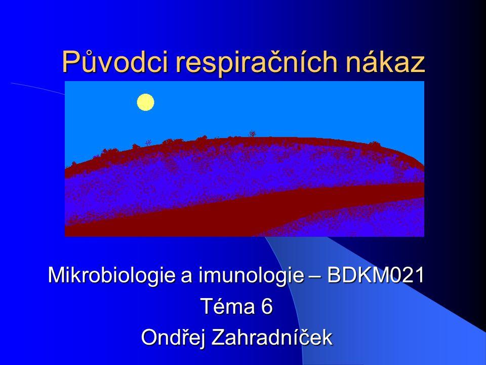 Původci respiračních nákaz