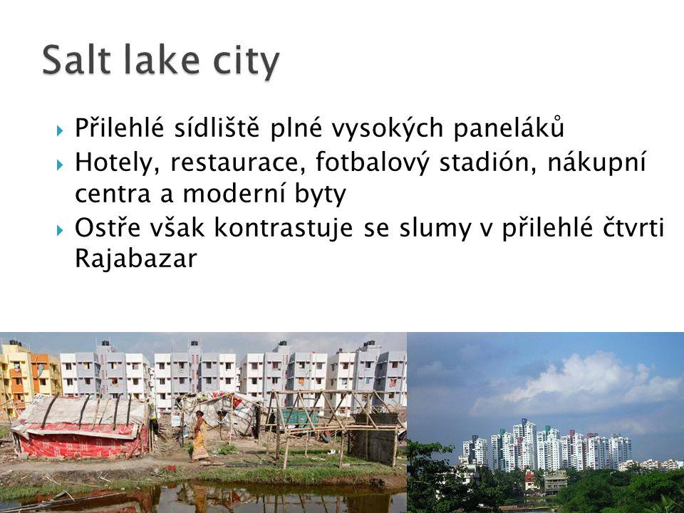 Salt lake city Přilehlé sídliště plné vysokých paneláků