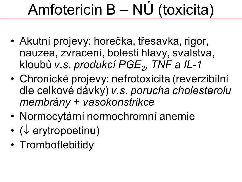 Amfotericin B – NÚ (toxicita)
