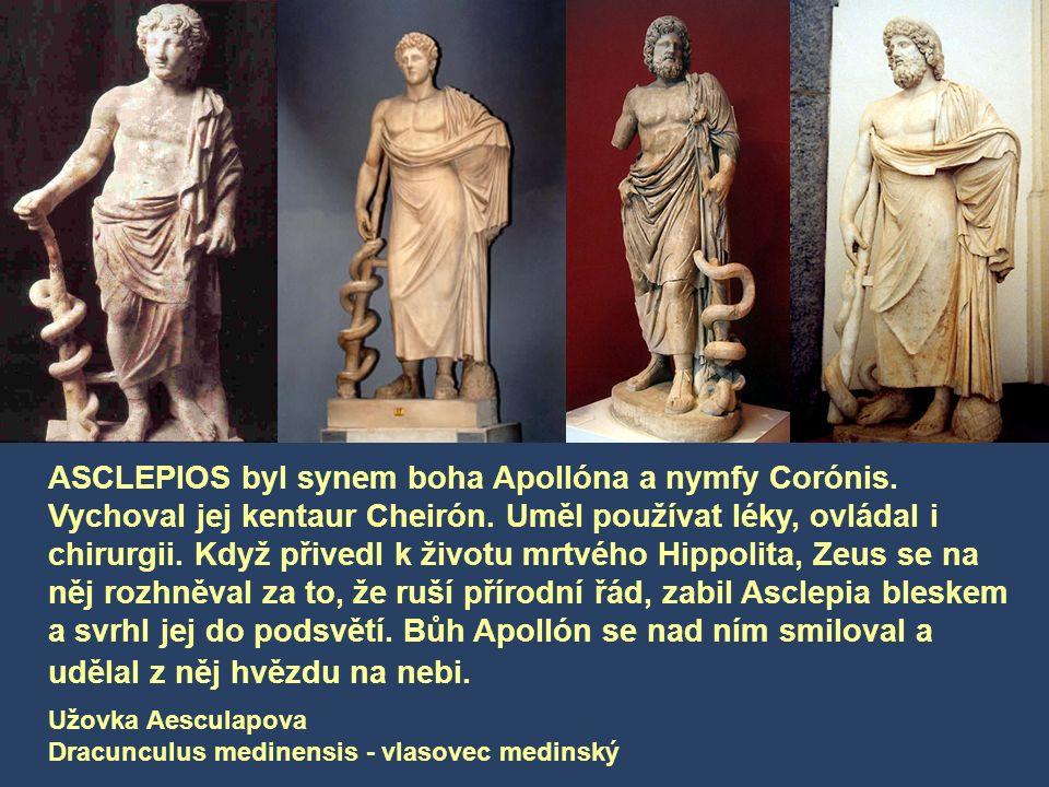 ASCLEPIOS byl synem boha Apollóna a nymfy Corónis