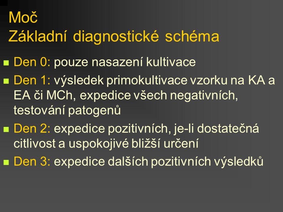 Moč Základní diagnostické schéma