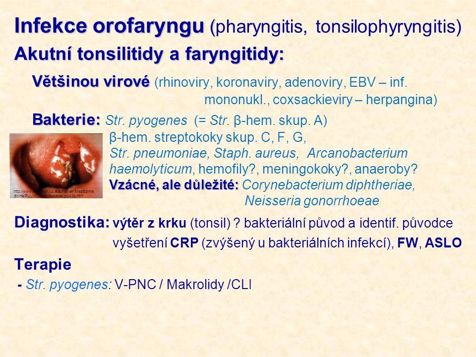 Infekce orofaryngu (pharyngitis, tonsilophyryngitis)