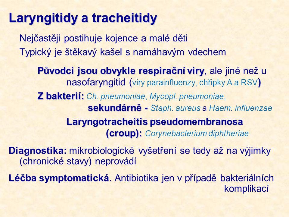 Laryngitidy a tracheitidy