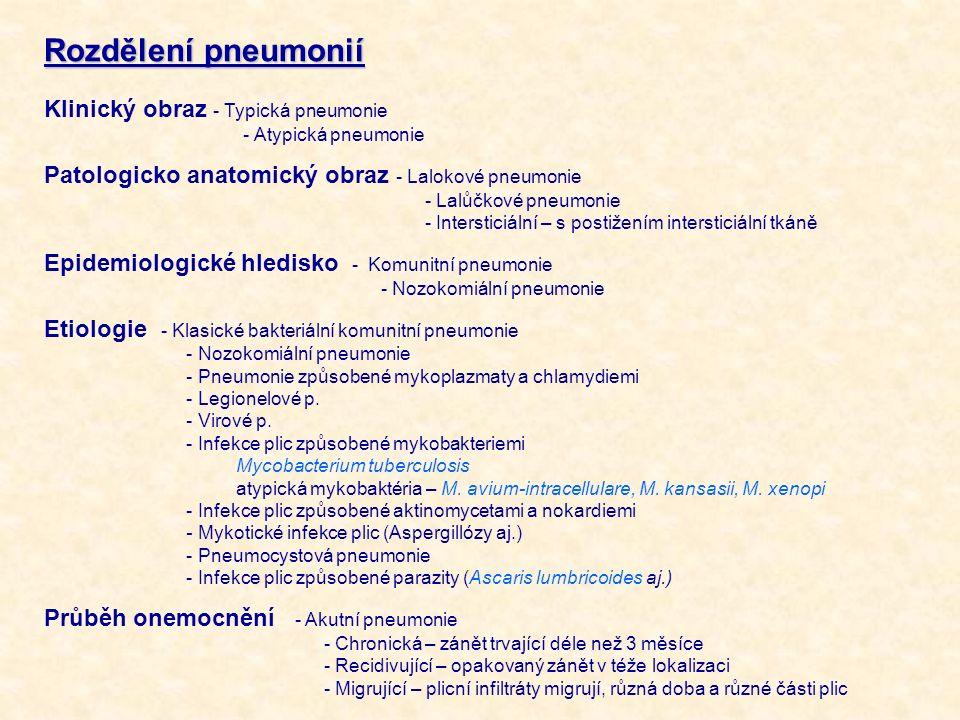 Rozdělení pneumonií Klinický obraz - Typická pneumonie