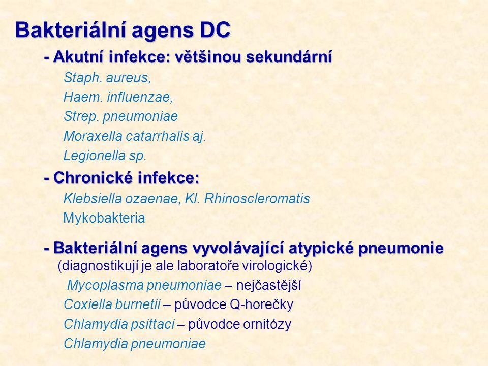 Bakteriální agens DC - Akutní infekce: většinou sekundární
