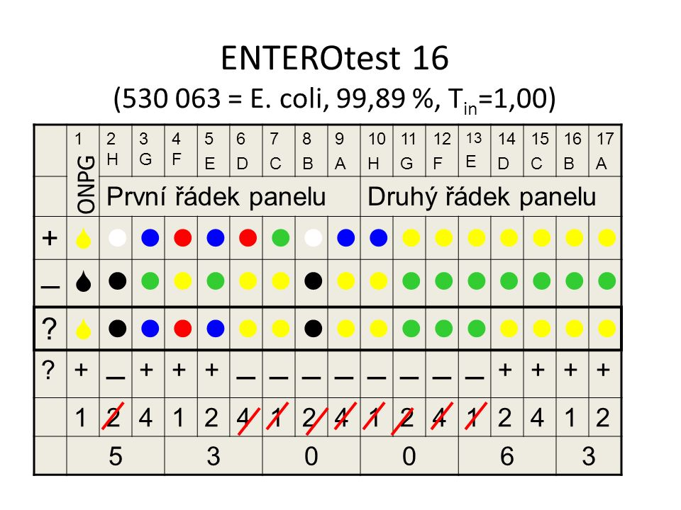 ENTEROtest 16 (530 063 = E. coli, 99,89 %, Tin=1,00)