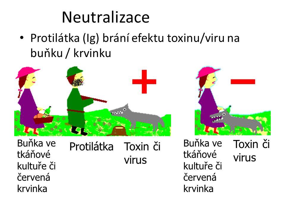 Neutralizace Protilátka (Ig) brání efektu toxinu/viru na buňku / krvinku. + – Buňka ve tkáňové kultuře či červená krvinka.