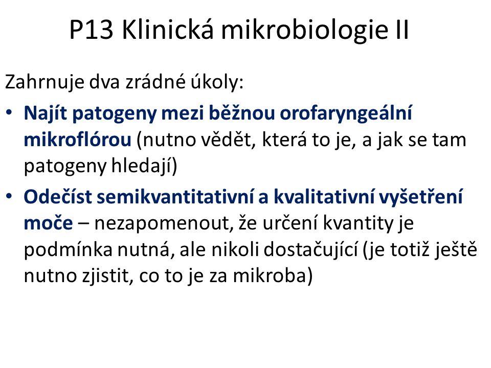 P13 Klinická mikrobiologie II