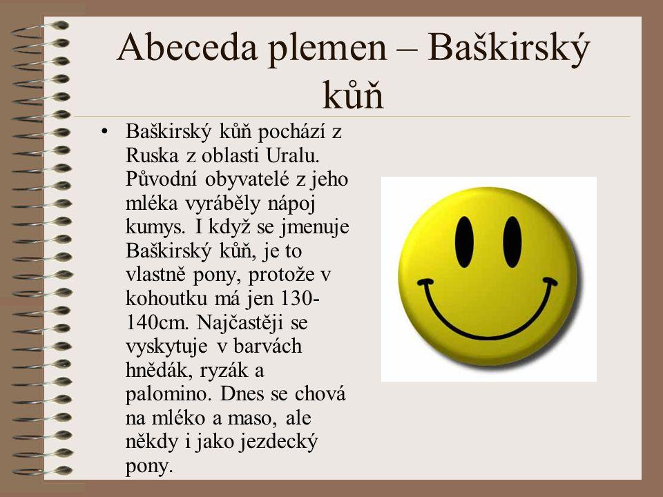 Abeceda plemen – Baškirský kůň