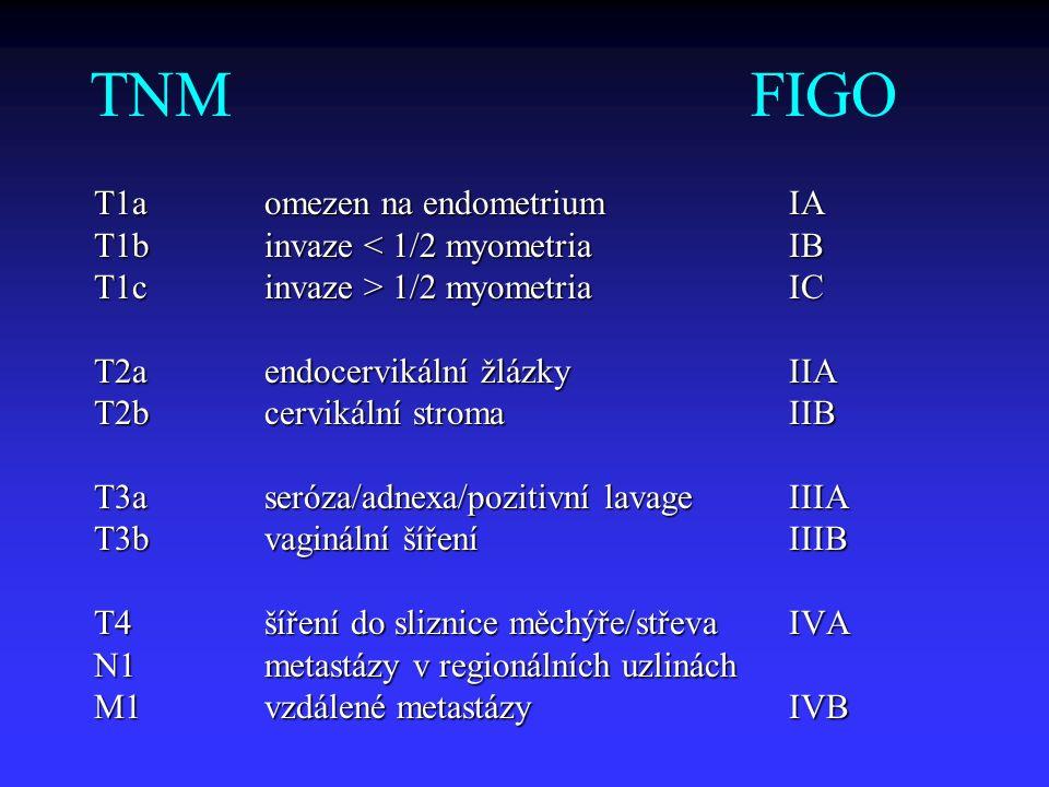 TNM FIGO T1a omezen na endometrium IA T1b invaze < 1/2 myometria IB