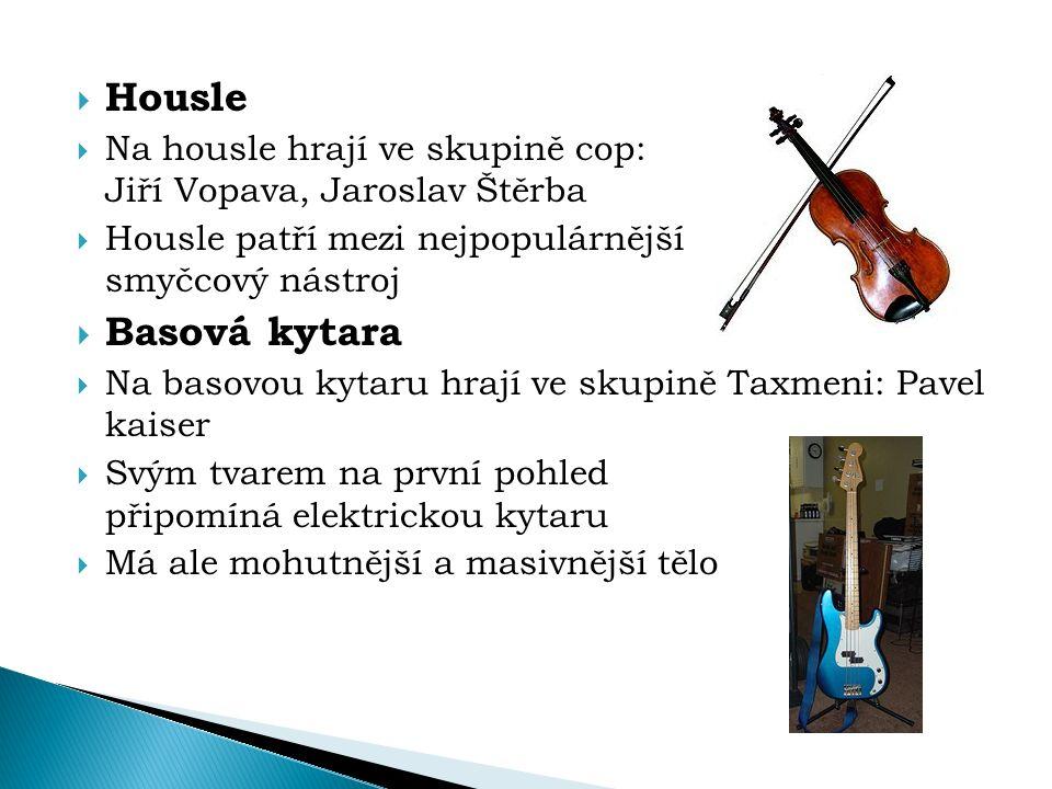 Housle Na housle hrají ve skupině cop: Jiří Vopava, Jaroslav Štěrba.