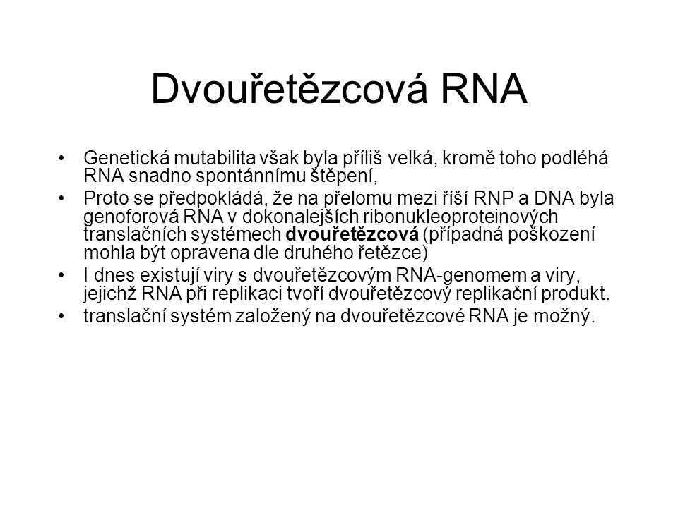 Dvouřetězcová RNA Genetická mutabilita však byla příliš velká, kromě toho podléhá RNA snadno spontánnímu štěpení,