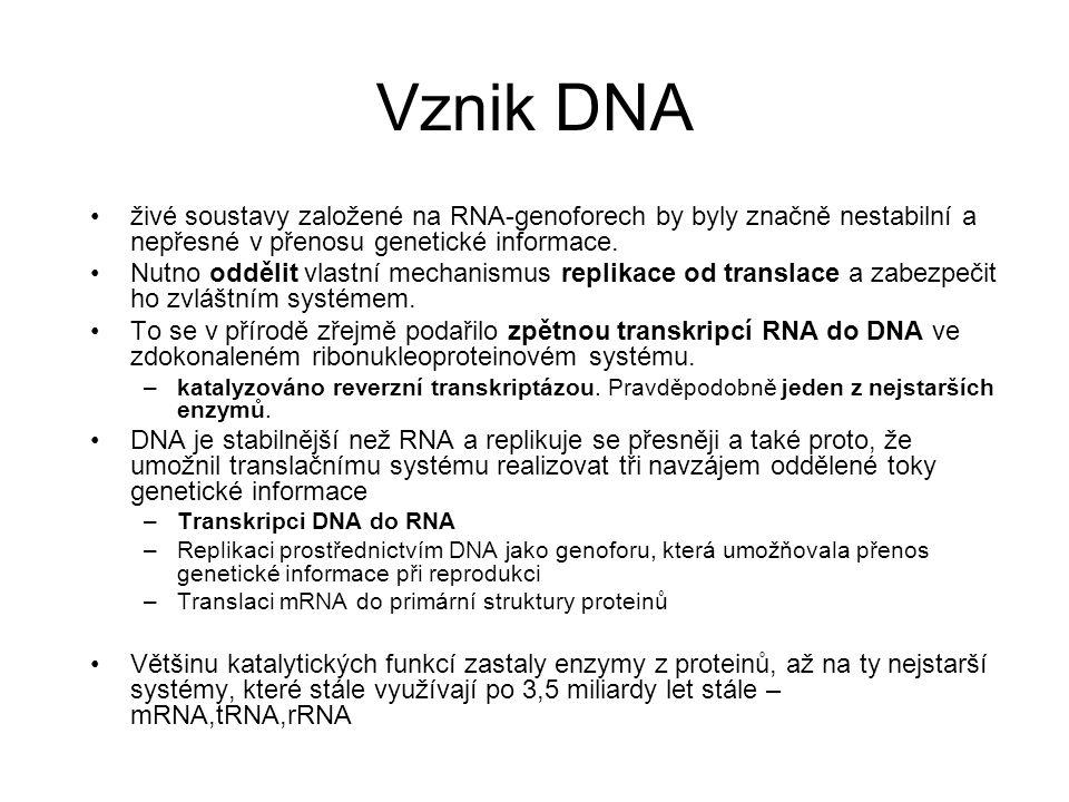 Vznik DNA živé soustavy založené na RNA-genoforech by byly značně nestabilní a nepřesné v přenosu genetické informace.