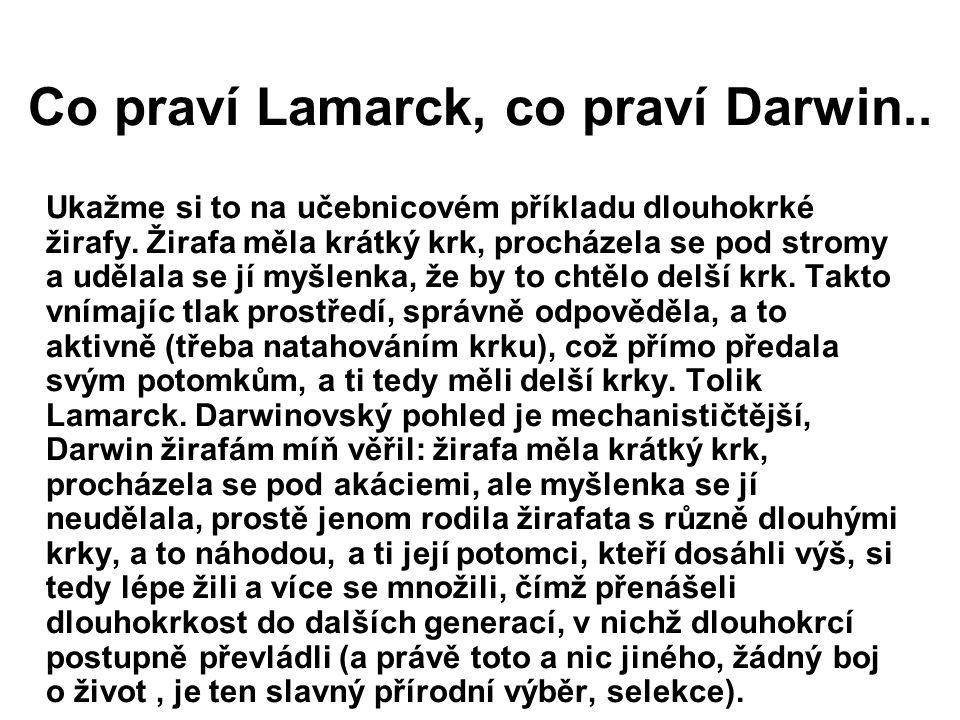 Co praví Lamarck, co praví Darwin..