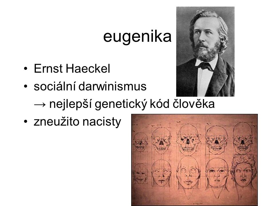 eugenika Ernst Haeckel sociální darwinismus