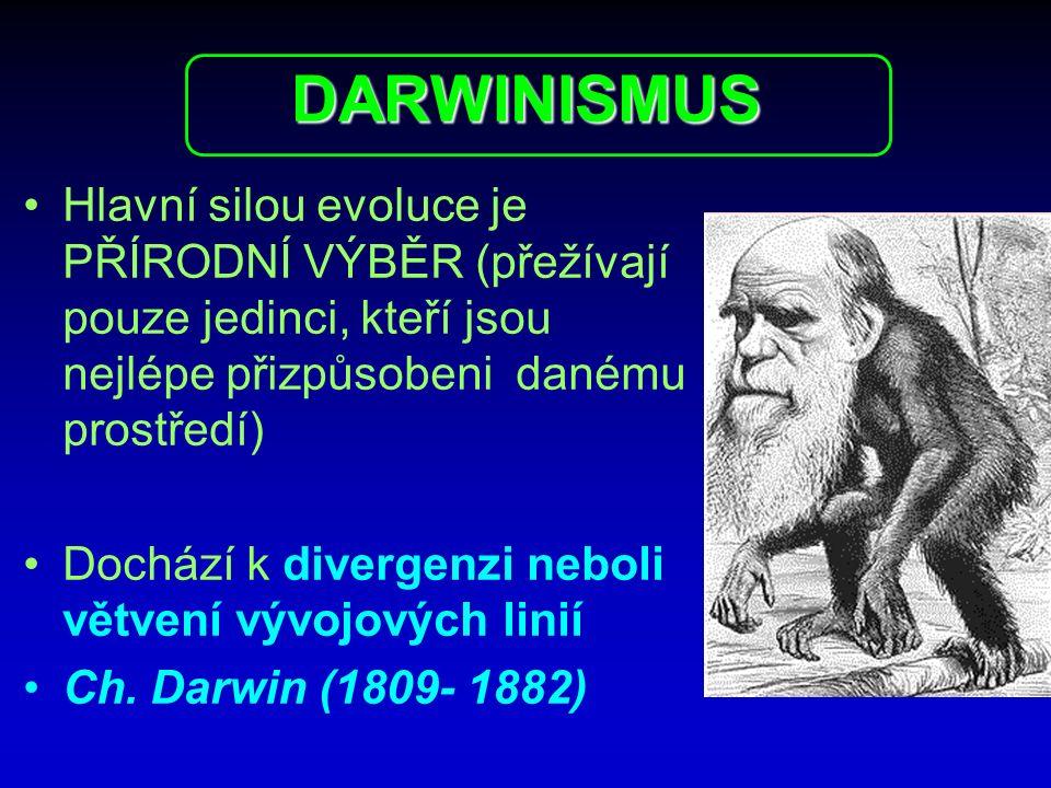 DARWINISMUS Hlavní silou evoluce je PŘÍRODNÍ VÝBĚR (přežívají pouze jedinci, kteří jsou nejlépe přizpůsobeni danému prostředí)