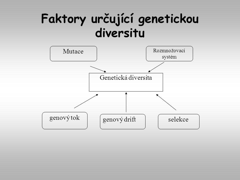 Faktory určující genetickou diversitu