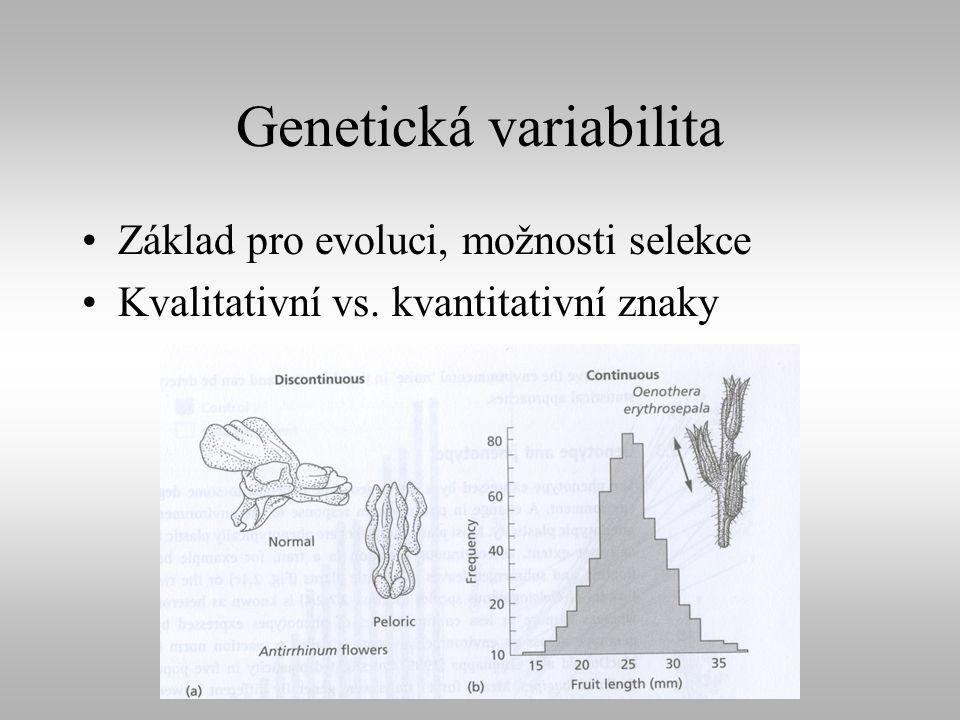 Genetická variabilita