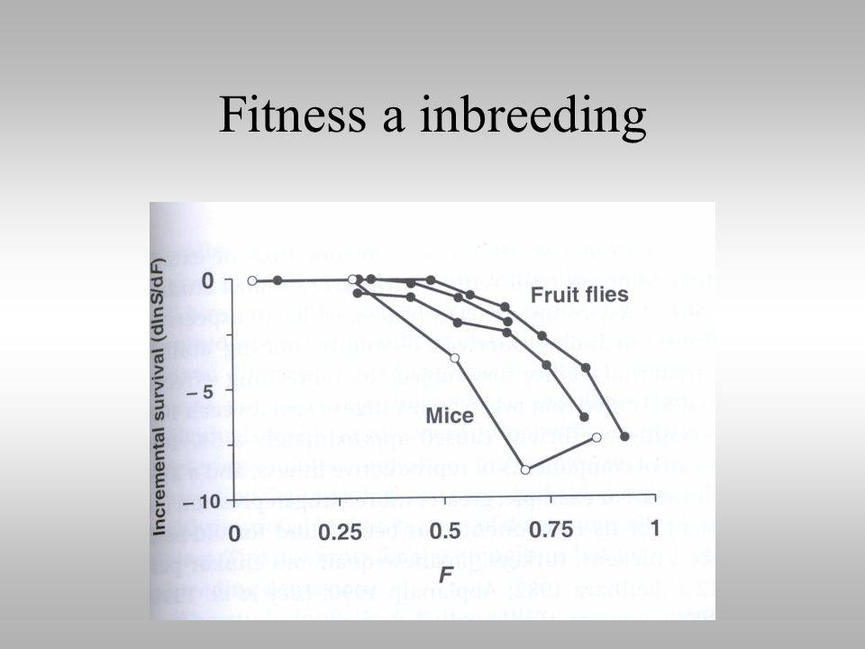 Fitness a inbreeding