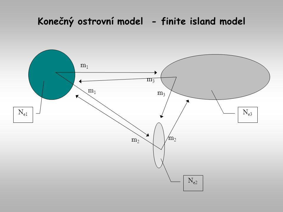 Konečný ostrovní model - finite island model