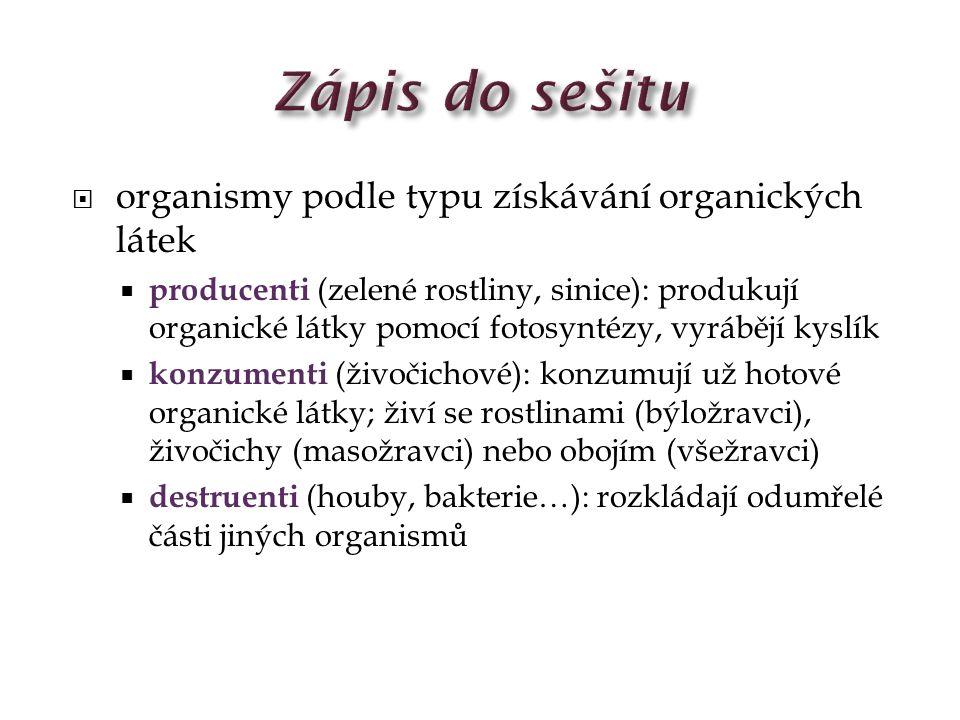 Zápis do sešitu organismy podle typu získávání organických látek
