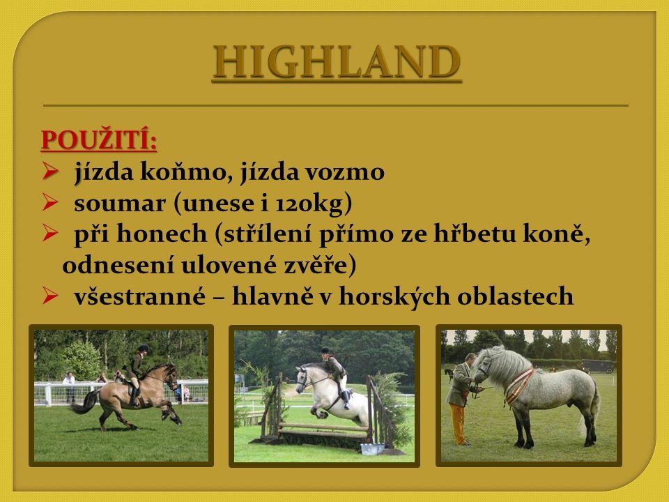 HIGHLAND POUŽITÍ: jízda koňmo, jízda vozmo soumar (unese i 120kg)