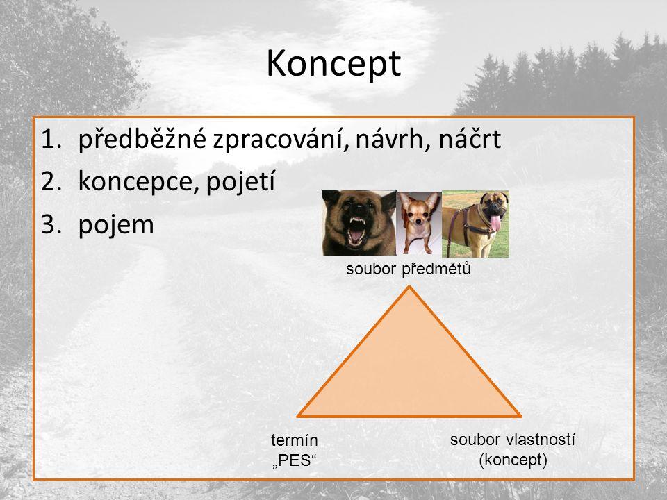 Koncept předběžné zpracování, návrh, náčrt koncepce, pojetí pojem