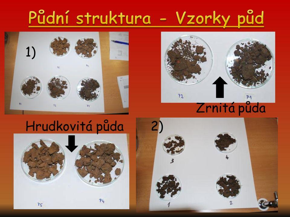 Půdní struktura - Vzorky půd