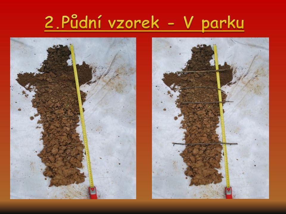 2.Půdní vzorek - V parku