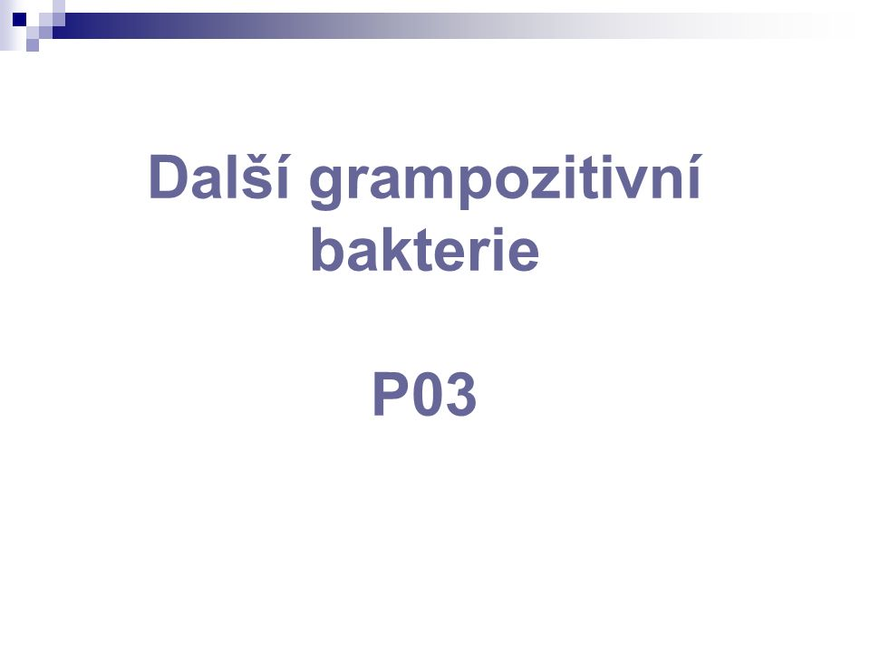 Další grampozitivní bakterie P03
