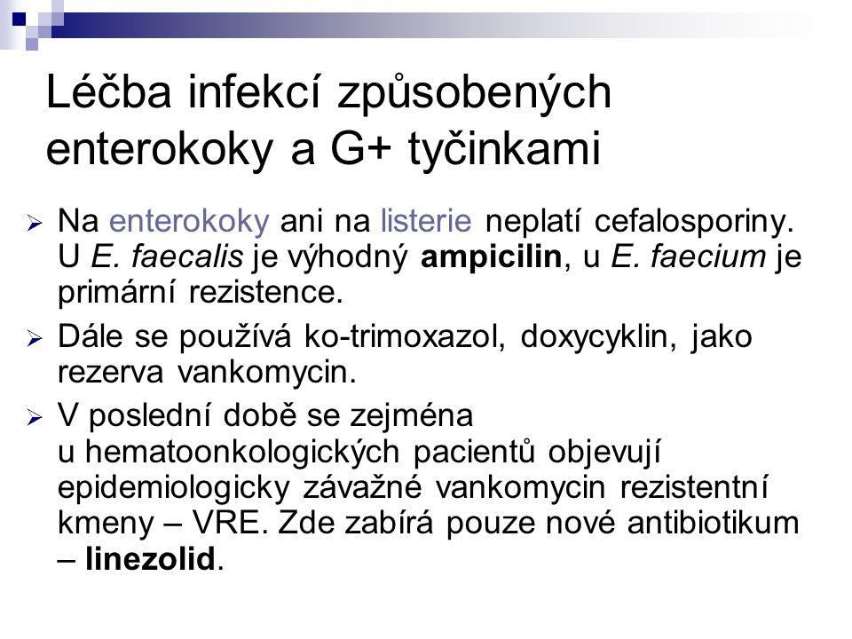 Léčba infekcí způsobených enterokoky a G+ tyčinkami