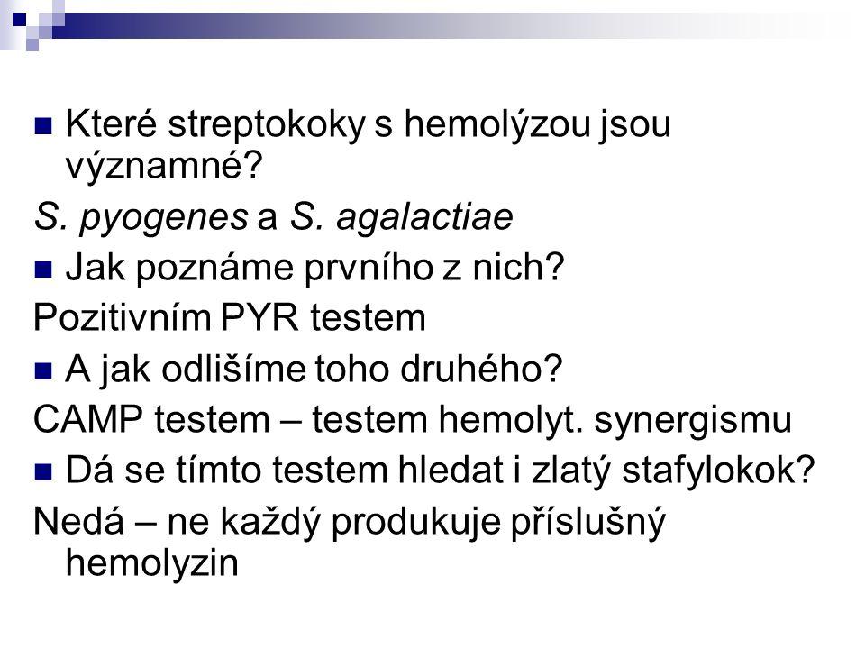 Které streptokoky s hemolýzou jsou významné