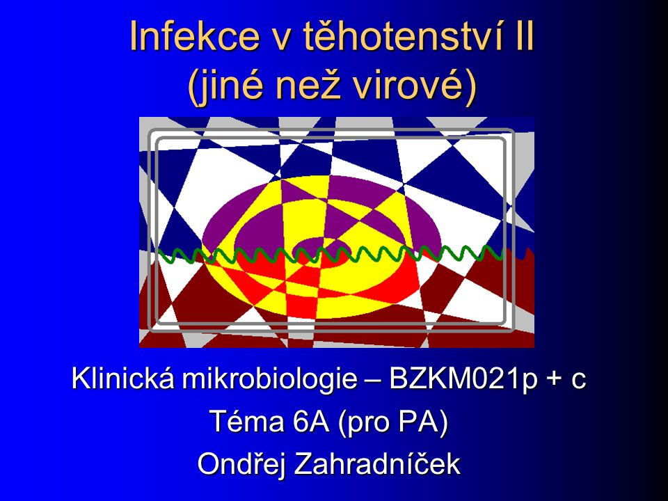 Infekce v těhotenství II (jiné než virové)