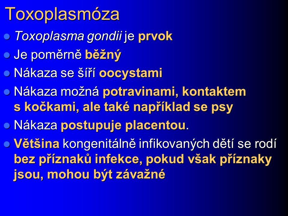 Toxoplasmóza Toxoplasma gondii je prvok Je poměrně běžný