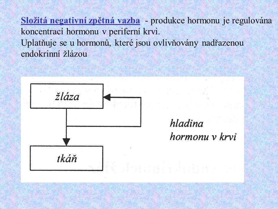 Složitá negativní zpětná vazba - produkce hormonu je regulována