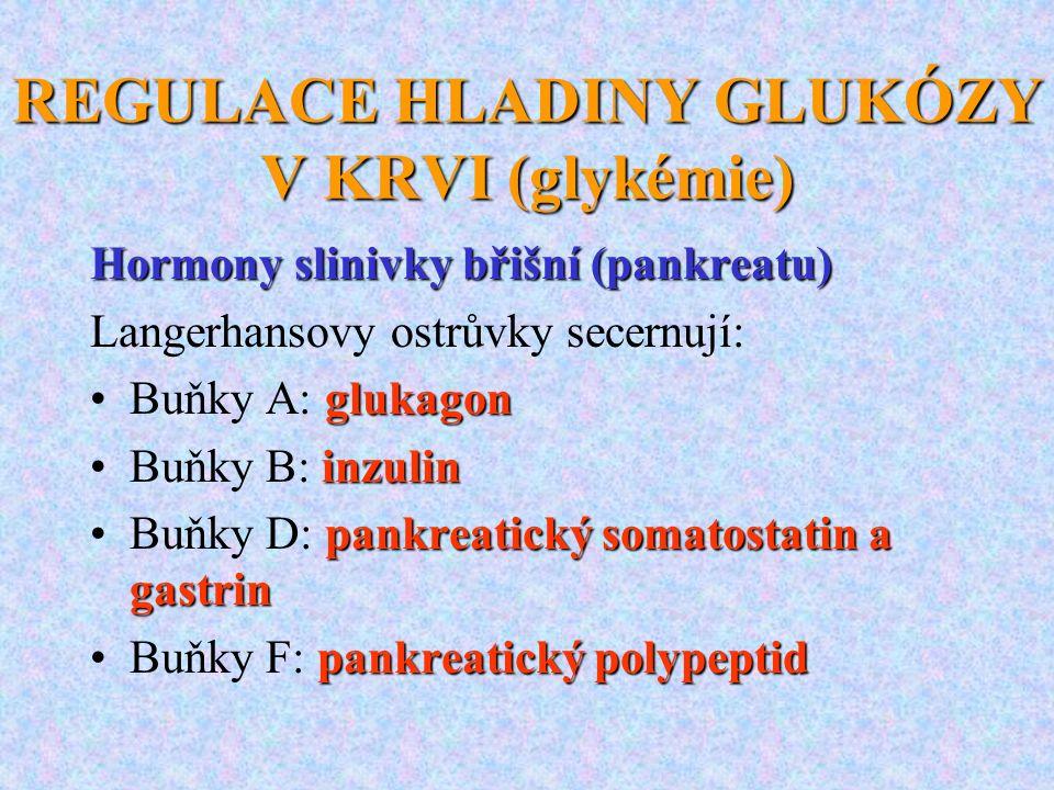 REGULACE HLADINY GLUKÓZY V KRVI (glykémie)