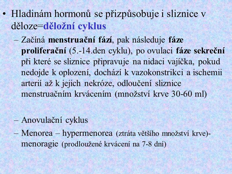 Hladinám hormonů se přizpůsobuje i sliznice v děloze=děložní cyklus