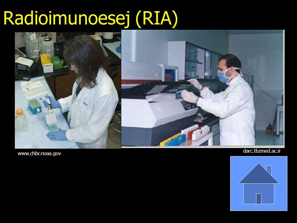 Radioimunoesej (RIA) darc.tbzmed.ac.ir www.chbr.noaa.gov