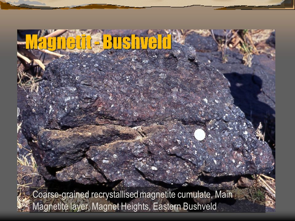 Magnetit - Bushveld Coarse-grained recrystallised magnetite cumulate, Main Magnetite layer, Magnet Heights, Eastern Bushveld.
